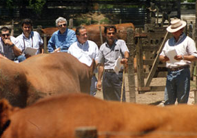 Jornada Téc. en Casamu Cardales (´94). Der: Daniel López, Fernando Sosa, Eduardo Ramos, Fernando Lagos, CSM y Juan A. Lafontaine