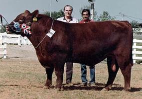 Con Alberto Sosa Gautier, dueño de CSM 318 Iporavé, Gran Campeón Expo Asunción 1989