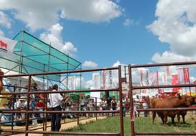 Charla técnica en Expoagro 2010
